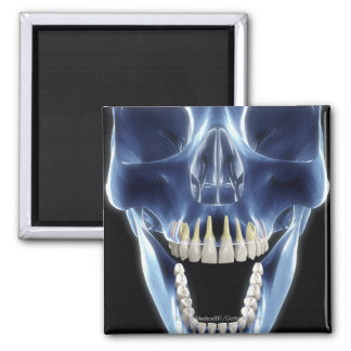 X-ray style look at human teeth 2 inch square magnet