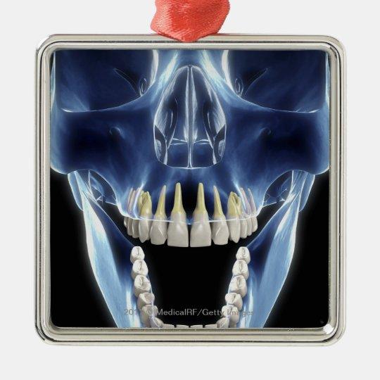 X-ray style look at human teeth metal ornament