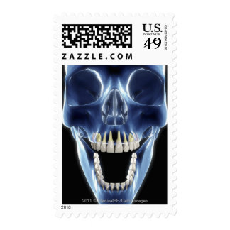 X-ray style look at human teeth postage stamp