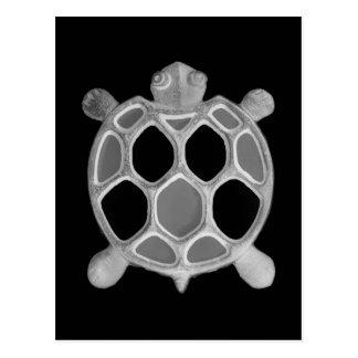 X-Ray Turtle! Postcard
