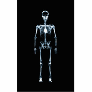 X-Ray Vision Blue Single Skeleton Photo Sculptures