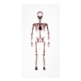 X-Ray Vision Single Skeleton White Red Card