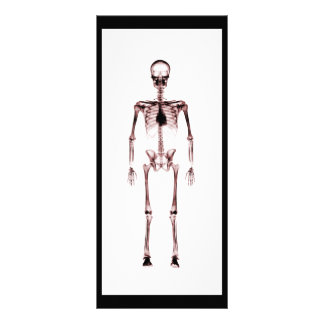 X-Ray Vision Single Skeleton White Red Rack Card