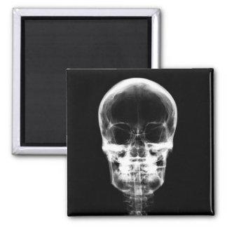 X-RAY VISION SKELETON SKULL - B&W MAGNETS