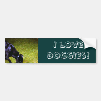 Xander at Night copy, I love doggies! Bumper Sticker