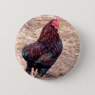 Xavier III Pinback Button