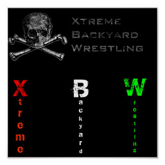XBW colors+ skull poster