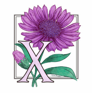 Xeranthemum Flower Monogram Standing Photo Sculpture