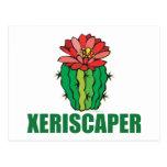 Xeriscaping Postcard