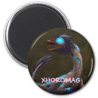 Xhoromag 19 magnet