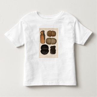 XIX Stone implements, New Mexico Tee Shirt