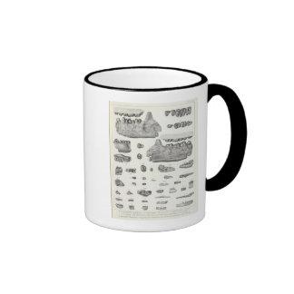 XLV Phenacodus, Opisthotomus, Hyopsodus Ringer Coffee Mug