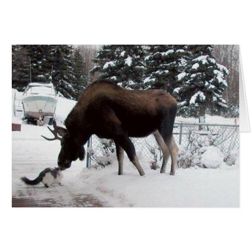 Xmas (Cat & Moose) Greeting Card