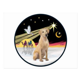 Xmas Dove (R) - Yellow Lab (F) Postcard