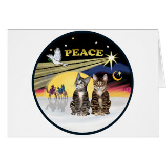 Xmas Dove - Two Tabby Cats Card