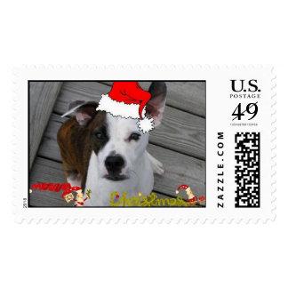 Xmas Duke Postage Stamp
