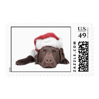 Xmas Labrador Stamps