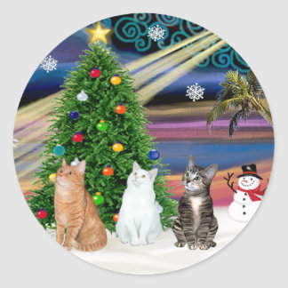 Xmas Magic - 3 cats (2 tabbys - white) Classic Round Sticker