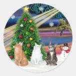 Xmas Magic - 3 cats (2 tabbys - white) Round Sticker
