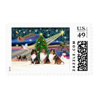 Xmas Magic-3Shelties 1TSri-2Sable Postage