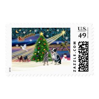 Xmas Magic-Aussie Cattle Dog pair Stamps