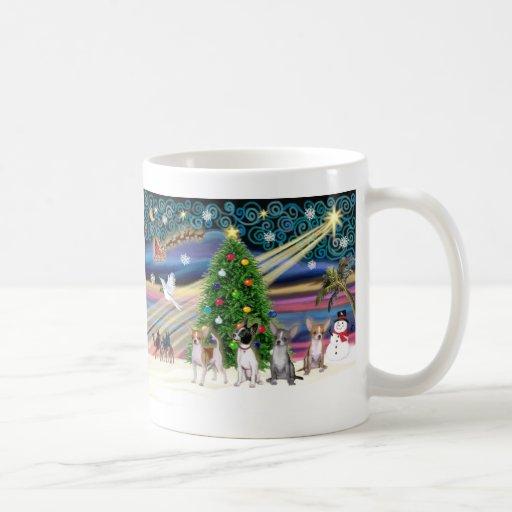Xmas Magic-Chihuahuas (four) Coffee Mugs