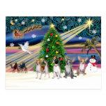 Xmas Magic-Chihuahuas (four) Post Cards