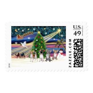 Xmas Magic-Chihuahuas (four) Stamps