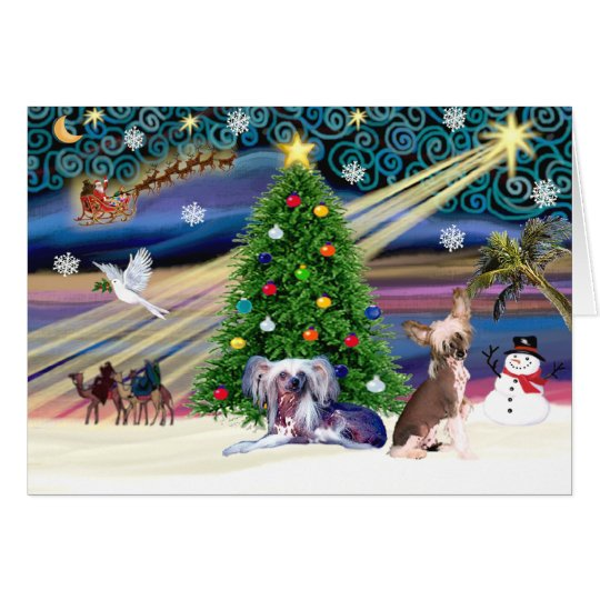 Xmas Magic-Chinese Crested Pair Card