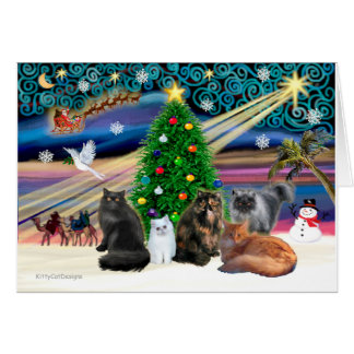 Xmas Magic - Five Persian Cats Card