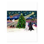 XMAS MAGIC-Poodle ST-Pair2 Postcards