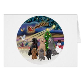 Xmas Magic (R) - 6 Standard Poodles Greeting Cards