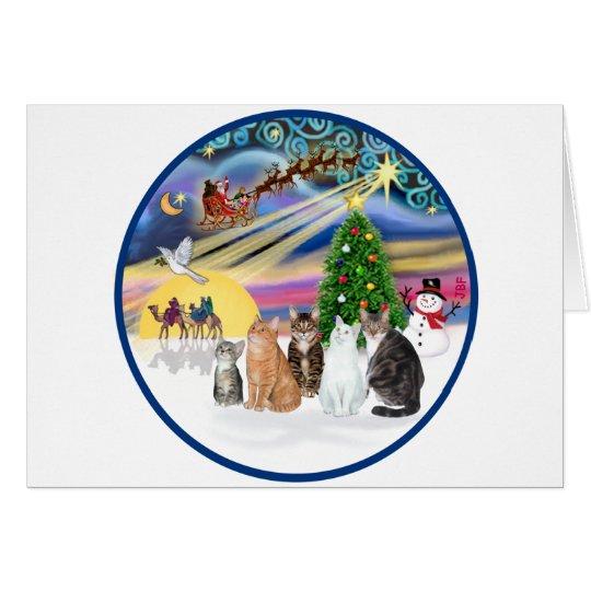 Xmas Magic (R) - Five cats (AmSH) Card