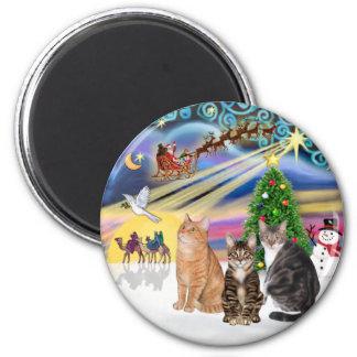 Xmas Magic (R) - Three cats (AmSH) 2 Inch Round Magnet