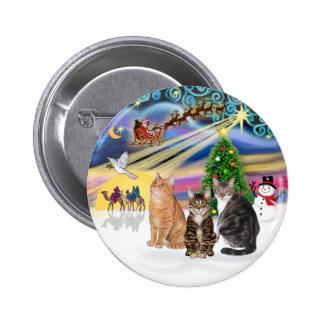 Xmas Magic (R) - Three cats (AmSH) Pinback Button