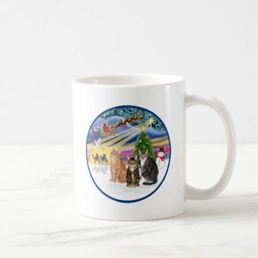Xmas Magic (R) - Three cats (AmSH) Classic White Coffee Mug