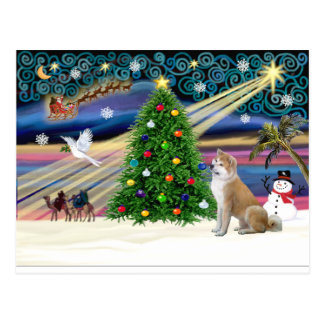 Xmas Magic-ShibaInu4 Postcard