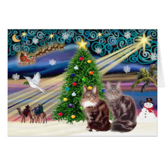 Xmas Magic - Two Maine Coon cats Greeting Cards