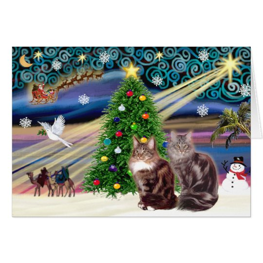 Xmas Magic - Two Maine Coon cats Card