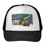 Xmas Magic - Two Maine Coon cats Trucker Hat