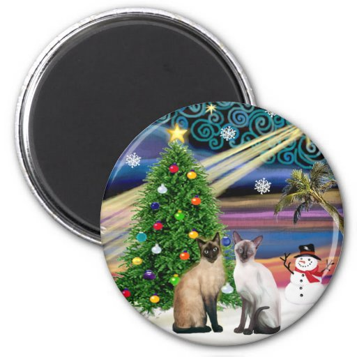 Xmas Magic - Two Siazmese cats (Seal + Choc) 2 Inch Round Magnet