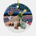 Xmas Magic - Two Sphynx cats Christmas Tree Ornaments