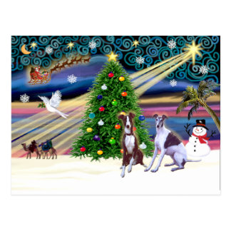 Xmas Magic-Whippet9and10 Postcard