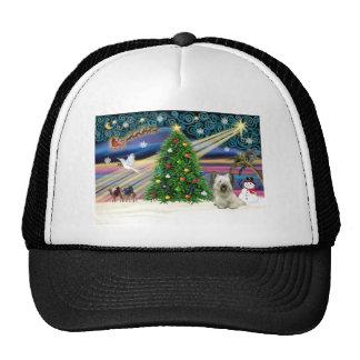 Xmas MagicSkye-light Mesh Hats