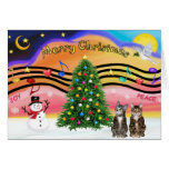 Xmas Music 2 - Two Tabby Cats Greeting Card