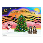 Xmas Music 2 - Two Tabby Cats Postcards