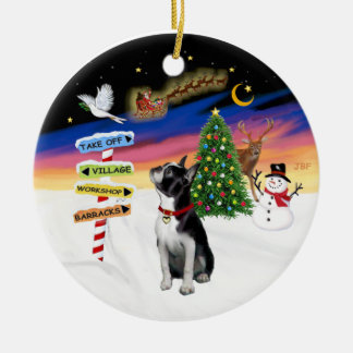 Xmas Signs - Boston Terrier 3 Ornaments