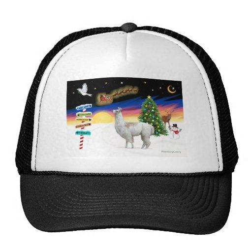Xmas Signs - Llama 1 Mesh Hat