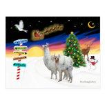 Xmas Signs - Mama Llama and Baby Postcard