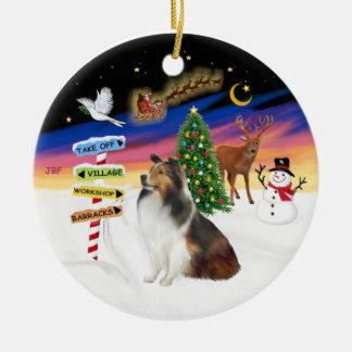 Xmas Signs - Shetland Sheepdog L Ornaments
